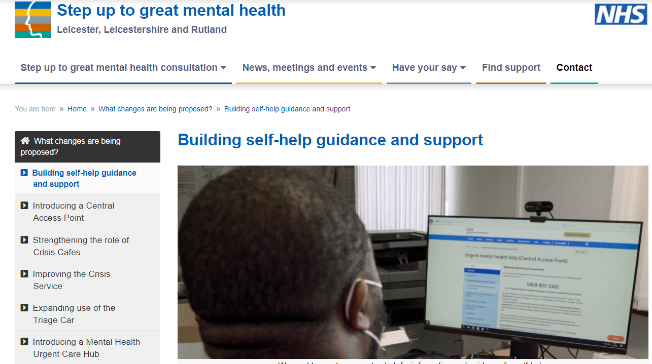 Step up to Great Mental Health (public consultation)